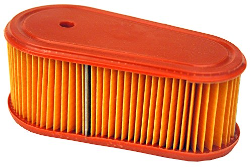Maxpower 334396 Air Filter and Pre-Cleaner for Briggs and Stratton 795066/5419K/796254