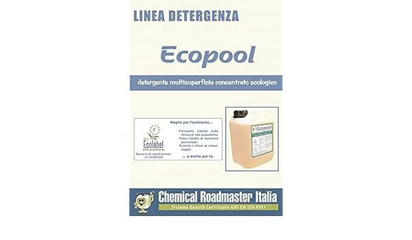 sgrassatore 100% natural, iperconcentrato, ECOPOOL, 5 L: Amazon.es ...