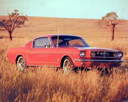 Antique Ford Mustang - Vintage Car Wall Decor 1965 Red Ford Mustang Fastback Art Print Poster (16x20)
