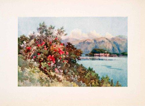 1908 Print (1908 Print Villa Carlotta Lake Como Roses Wildflowers Landscape Ella Du Cane Art - Original Color Print)