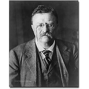 PRESIDENT THEODORE ROOSEVELT 1913 PORTRAIT 8x10 SILVER HALIDE PHOTO PRINT