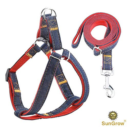 Dog Harness & Leash Set - Pet Halter & Strap for Control & Obedience Training - Durable Nylon & Denim Walking Belt - Adjustable 21-31.5 Neck Size & Chest Girth for Retriever, Rottweiler & Collie