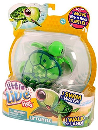 Little Live Pets Turtle - Digi