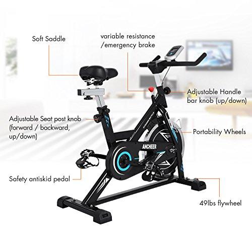 Gold S Gym Drive Belt Replacement: Ultrar Sport Indoor Cycling Bike Smooth Belt Driven (49 Lb