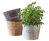 Metal Planter Flower Pot Succulent Container Garden Bucket for Indoor or Outdoor Balcony Patio by CEDAR HOME, 8.5''W x 8.5''D x 7''H, 3 Set