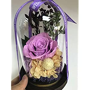 Amoleya 4.9 Inch Handmade Preserved Rose Enchanted Rose That Lasts in Glass Dome,Violet 5
