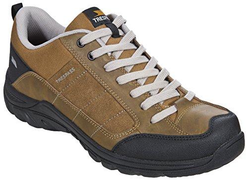Trespass D'athlétisme Beige Chaussures Mearns oak Homme EqfW7Erw1