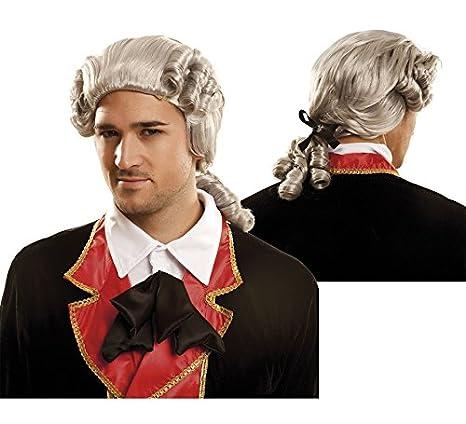 My Other Me Me-202504 Peluca lord Talla única Viving Costumes 202504: Amazon.es: Juguetes y juegos