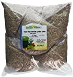"Certified Organic Hard Red Wheat Sprouting Seed: 5 Pre-Measured Bags for 10""x20"" Trays (Approx 5 Lb) For Growing Wheatgrass to Juice, Grind for Flour & Bread, Ornamental Wheat Grass - Non-GMO"
