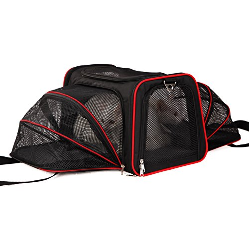 A4Pet Airline Approved Pet Carrier, Both Side Expandable, Top Loading Cats Small Dogs Puppy Small Animals by A4Pet (Image #5)