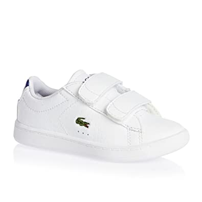 429f6bcc0a36 Lacoste Boys Infant Boys Carnaby Evo Trainers in White Blue - 6 Infant