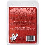 Image of Happy Hen Treats Ceramic Nest Eggs