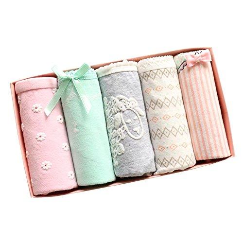 Wxian Girls Cute Multi Pattern Briefs Underwear Pack Of 5