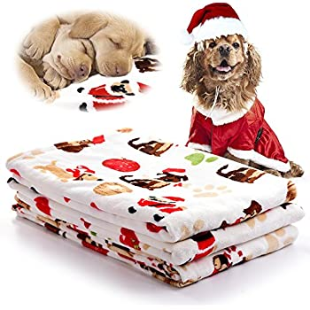 Amazon.com : kiwitatá Pet Blanket for Small Dogs and Cats ...