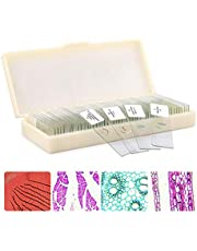 QUNSE Microscope Slides Prepared Lab Specimens Biological Sample with Insects Plants Animals Bacteria Education Science