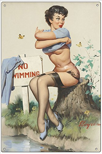 fa0bd31b38fa Amazon.com: Pixy Ink Vintage Pin-Up Metal Plaque Taking A Chance (No ...