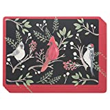 Now Designs 1777039 Cork-Backed Placemats, Set of Four, Winter Bird, 4 Piece