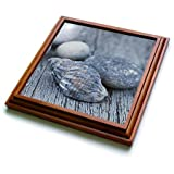3dRose trv_276238_1 Pretty Blue Shell and Pebble on Driftwood Trivet with Tile, 8 by 8''