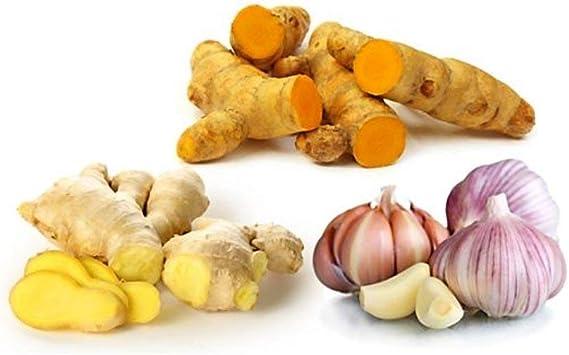 Amazon.com: Botaniceutics GG&T - Organic Ginger, Garlic and ...