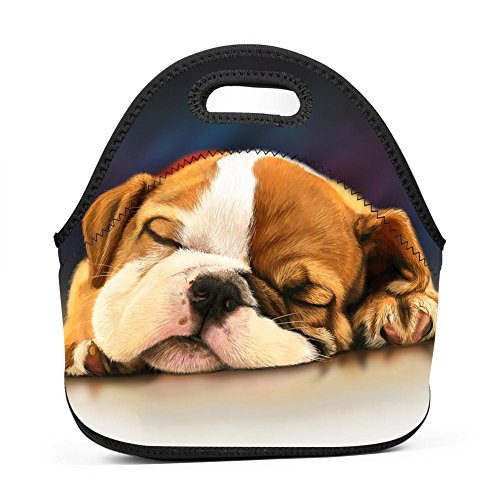 Family Dream Sleeping Pug Dog Painting Lunch Bag Portable Tote Bento Pouch Lunchbox Baby Bag Multifunctional Zipper Satchel for Outdoor Tour School Office Picnic Storage Bag