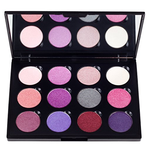 Coastal Scents Winterberry Palette, 8.5-Ounce by Coastal Scents (Coastal Scents Hot Pot Palette compare prices)