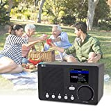 """Ocean Digital Radio Internet WiFi, Portable Digital Radio with Rechargeable Battery Bluetooth Receiver with 2.4"""" Color Display, Support UPnP and DLNA"""