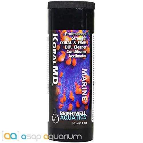 Pro Coral Iodine - Brightwell Aquatics Koral MD Pro Coral and Frag Dip 30 ml