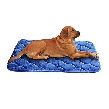 Colchón de Cama para Perro, con Costuras Acolchadas, colchoneta para Mascotas, Compresible, Almohadilla de Embalaje para Perro, Uso terapéutico y ...