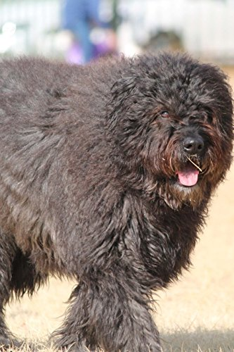 Fluffy Bouvier des Flandres Dog Journal: Take Notes, Write Down Memories in this 150 Page Lined (Bouvier Des Flandres Note)