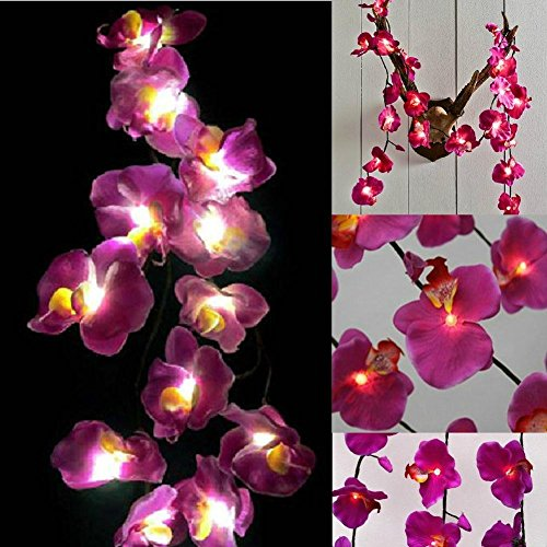 Children's Scorpion Costume (GaanZaLive36 Magical Garden Handmade 20 Romantic Hawaiian Plumeria Frangipani Natural silk Flower Fairy String Lights Patio Wedding Party Vanity Kid Wall Lamp Floral Home Decor 3m (Orchid, Purple))