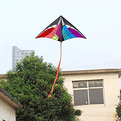 Galand Kite, Multicolor Single Line Kite with Tail Ribbons Flying Outdoor Sports Kids Gift Colorful: Home & Kitchen