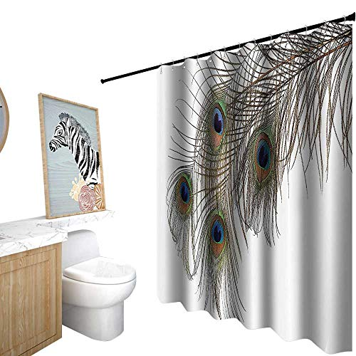 shower curtains for bathroom teal color,Peacock Decor Collection,A Feather of Peacock Power Animal Rising Out of the Ashes Symbol Creature Artsy Design,shower curtain for girls bathroom,W36
