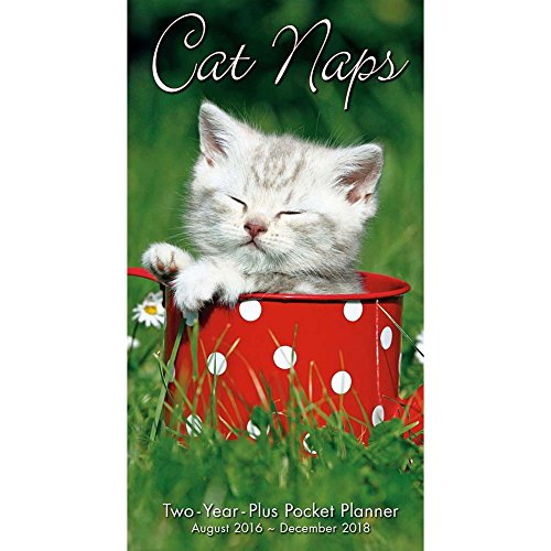 Cat Naps 2017- 2018 2 Year Pocket Planner Calendar