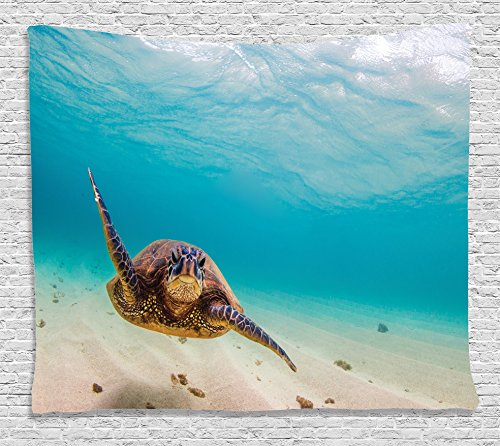 - Ambesonne Hawaiian Decorations Collection, Underwater Scuba Diving Sea Turtle Nature Animal Swimming Wildlife Theme, Bedroom Living Room Dorm Wall Hanging Tapestry, 80W X 60L Inch, Blue Beige Brown