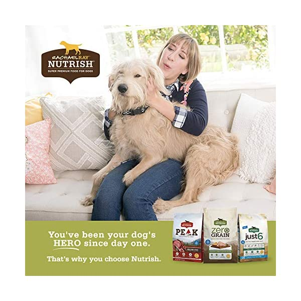 Rachael Ray Nutrish Dog Treats, Grain Free