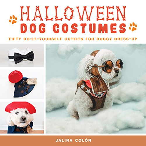 Halloween Dog Costumes: Fifty Do-It-Yourself Outfits for Doggy - Diy Beyonce Costume