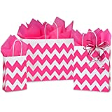 Hot Pink Chevron Paper Shopping Bag Assortment - 250 Pack