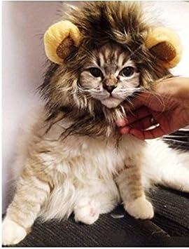 Peluca de león MA-on para perro o gato, disfraz para mascotas