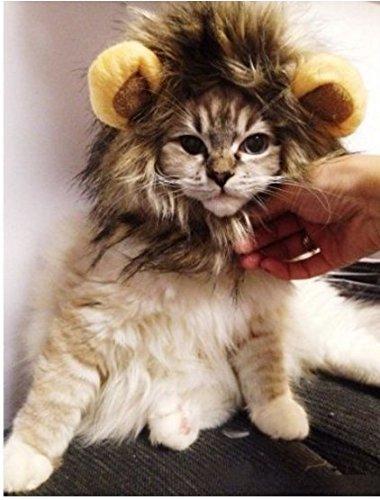 ALLtree - Peluca de León para Perro, Gato, Halloween, Vestido con Orejas: Amazon.es: Productos para mascotas