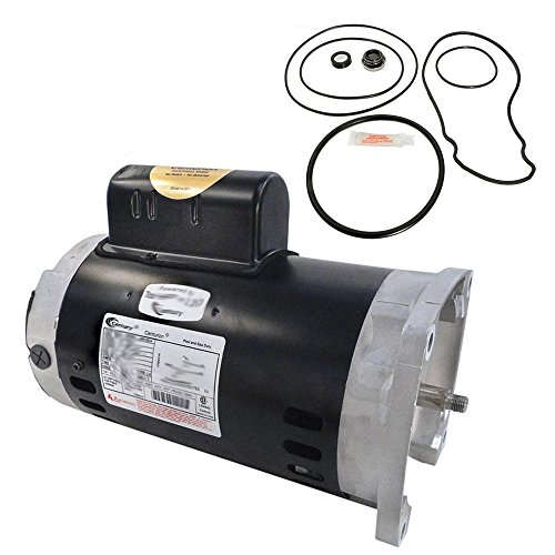 Pentair Whisperflo 1.5HP WFE-6 Replacement Motor Kit AO Smith B2842 w/ GO-KIT-32