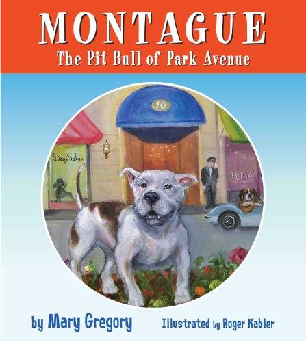 montague-the-pit-bull-of-park-avenue