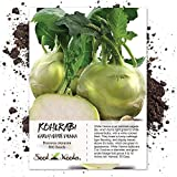 Seed Needs, Early White Vienna Kohlrabi (Brassica oleracea) 500 Seeds Non-GMO