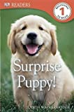 img - for Surprise Puppy! (DK Readers Level 1) book / textbook / text book