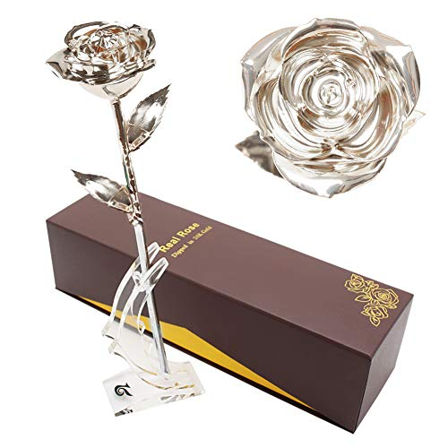 Silver Anniversary Rose - LOVAC Gold Dipped Rose, 24k Gold Eternity Rose with Transparent Stand Representing Immortal Love,Best Gift for Valentines Day, Mothers Day,Birthday Gift (Silver)
