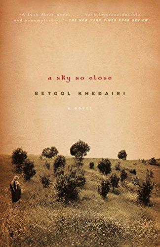 A Sky So Close: A Novel