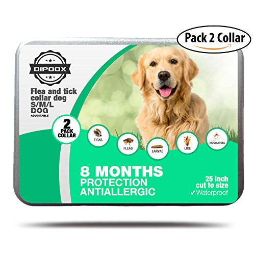 Flea and Tick Collars for Dogs (2-Pack) 8 Months of Protection | Durable, Waterproof, Adjustable | Adjustable Small, Medium, Large for Puppies, Adults, Seniors