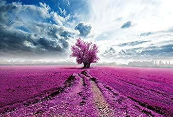 New Nature Photography Backdrops 7x5ft Lavender and Purple Floral Backdrop Nighttime Landscape View Backgrounds for Wedding Photography Customized Backdrop