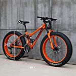LNDDP-Mountain-Bike-per-Adulti-Mountain-Bike-Hardtail-per-Pneumatici-da-24-Pollici-Telaio-a-Doppia-Sospensione-e-Forcella-per-Mountain-Bike-per-Tutti-i-Terreni