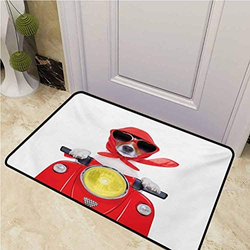 Doormat Outdoor Dog Driver for Dogs Muddy Paws Stylish Canine with Scarf Sunglasses Fashion Model Riding Scooter Funny Animal Rectangle 35 x 60 inch Multicolor