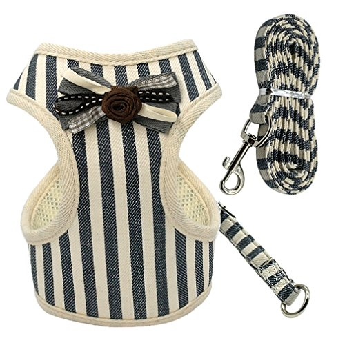 ZIRASS Soft Mesh Pet Puppy Dog Cat Harness Leash Set With Cute Lace Pet Vest For Small Medium Dogs Blue XL
